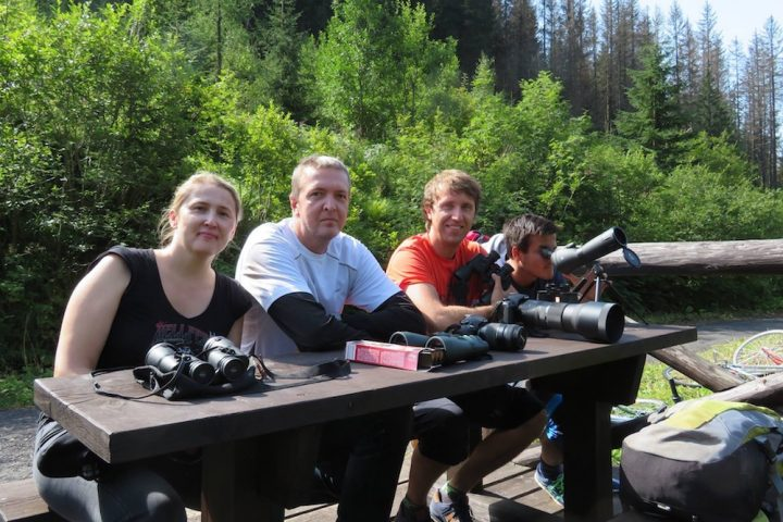 NEW BEARWATCHING WILDLIFE TOUR SLOVAKIA WITH ADVENTOURA 4